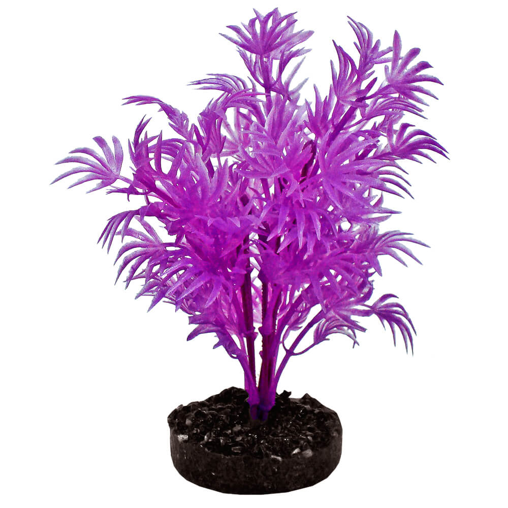 CB-2100-NPP - ColorBurst Florals® Dragon Leaf Plant - Neon Purple