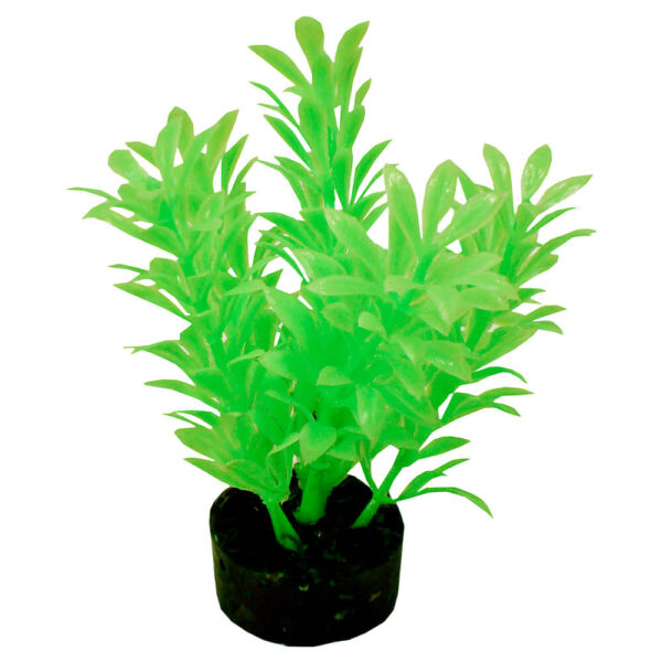 CB-2101-NGR - ColorBurst Florals® Exotic Mini Plant - Neon Green