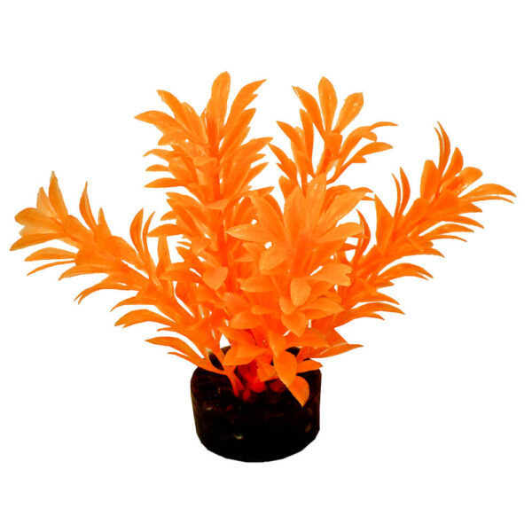 CB-2101-NOR - ColorBurst Florals® Exotic Mini Plant - Neon Orange