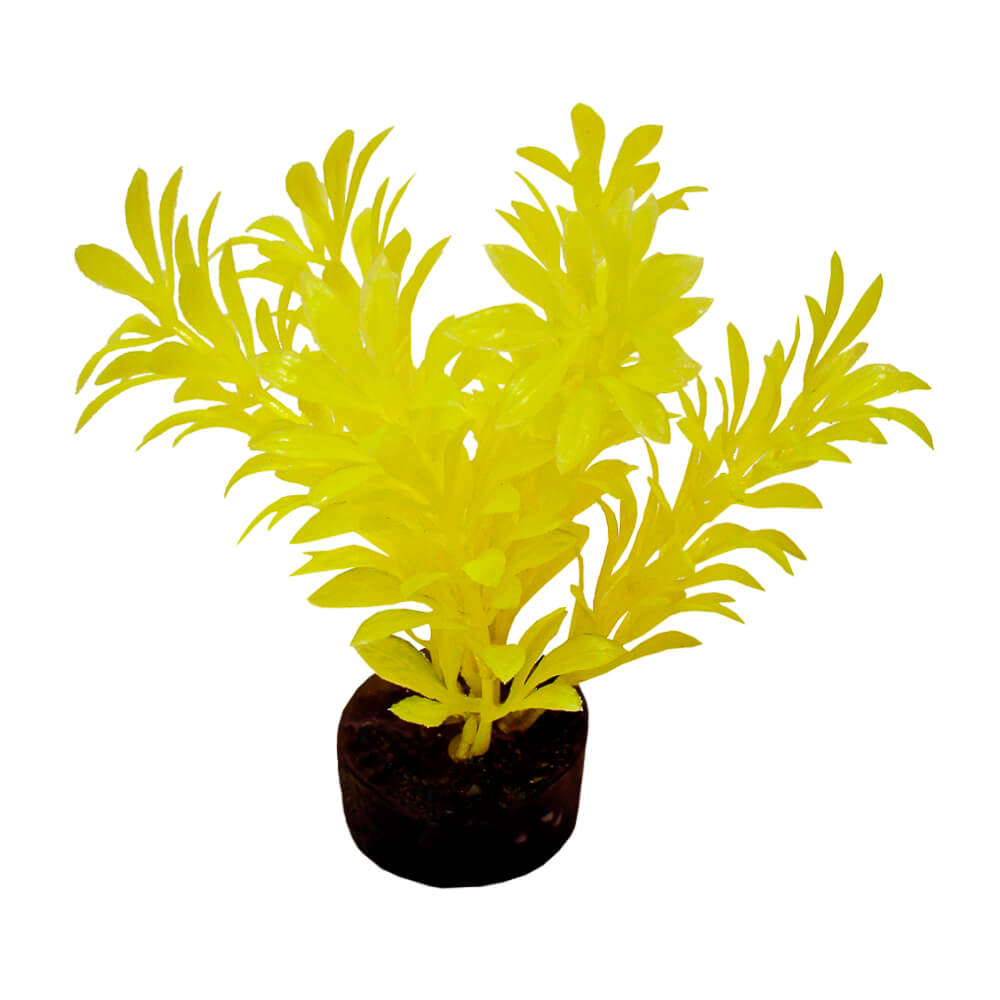 CB-2101-NYW - ColorBurst Florals® Exotic Mini Plant - Neon Yellow
