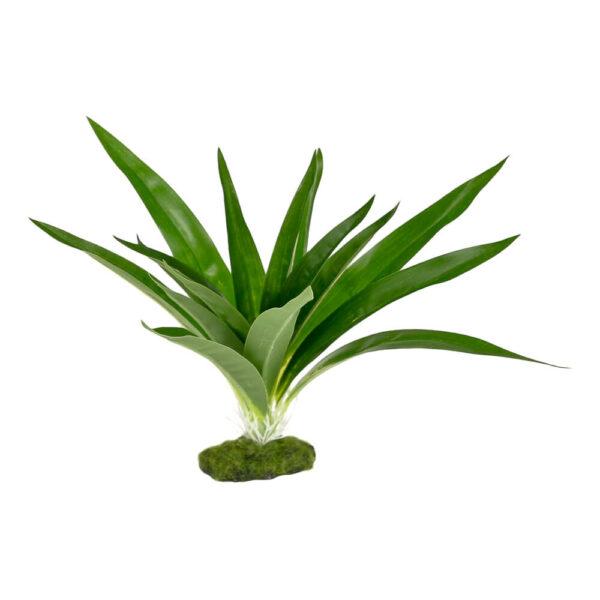 CB-3003-GR - ColorBurst Florals® Dracaena Deremensis Broad Leaf - Green