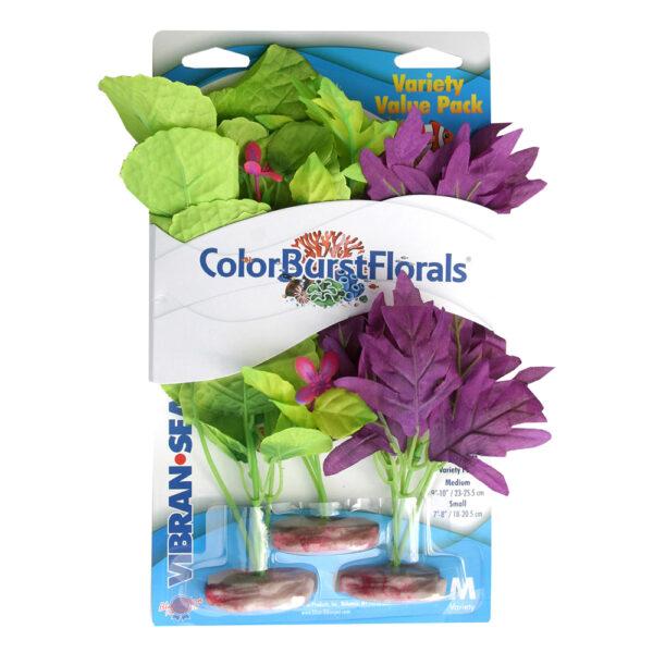 CB-MVP3 - ColorBurst Florals® Amazon Flowering Cluster