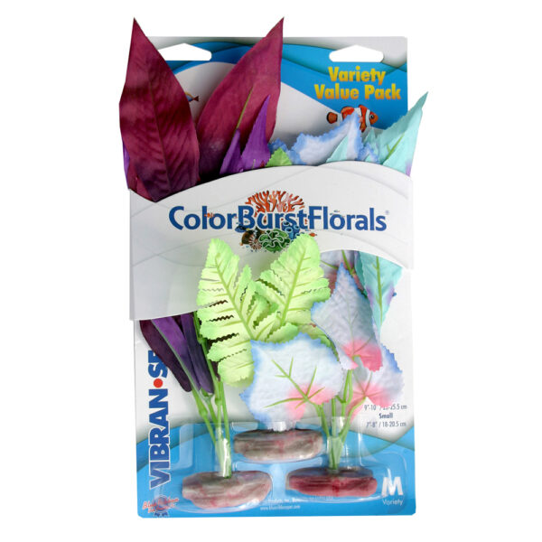 CB-MVP5 - ColorBurst Florals® Variety Pk Assortment