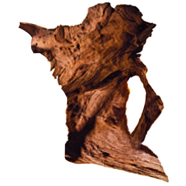DW-L - Large Driftwood 20-26 inches