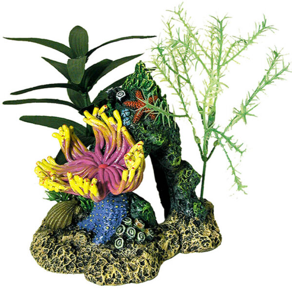 EE-1062 - Exotic Environments® Indonesian Anemone Cave With Plants