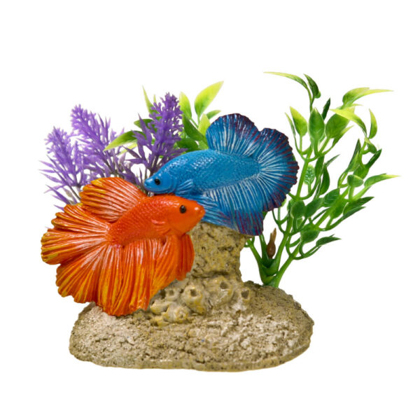 EE-1116 - Exotic Environments® Aquatic Scene with Betas