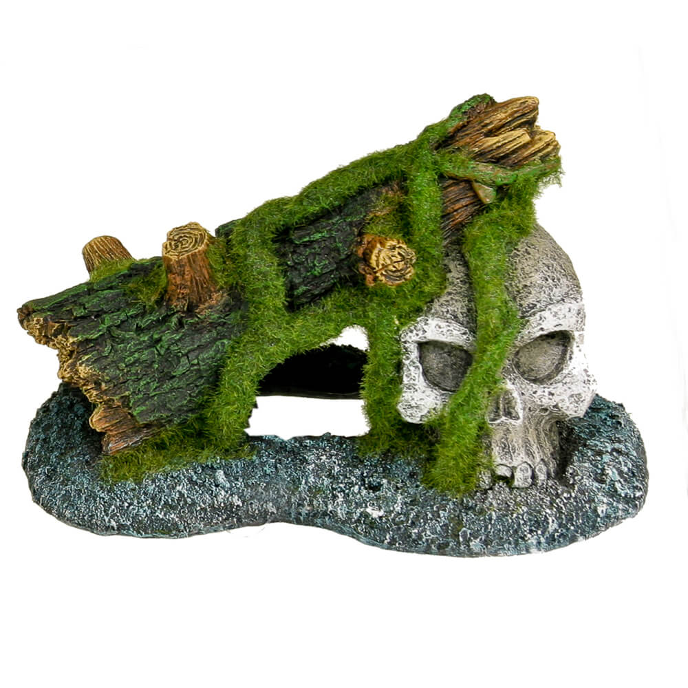 EE-1128 - Exotic Environments® Skull with Moss