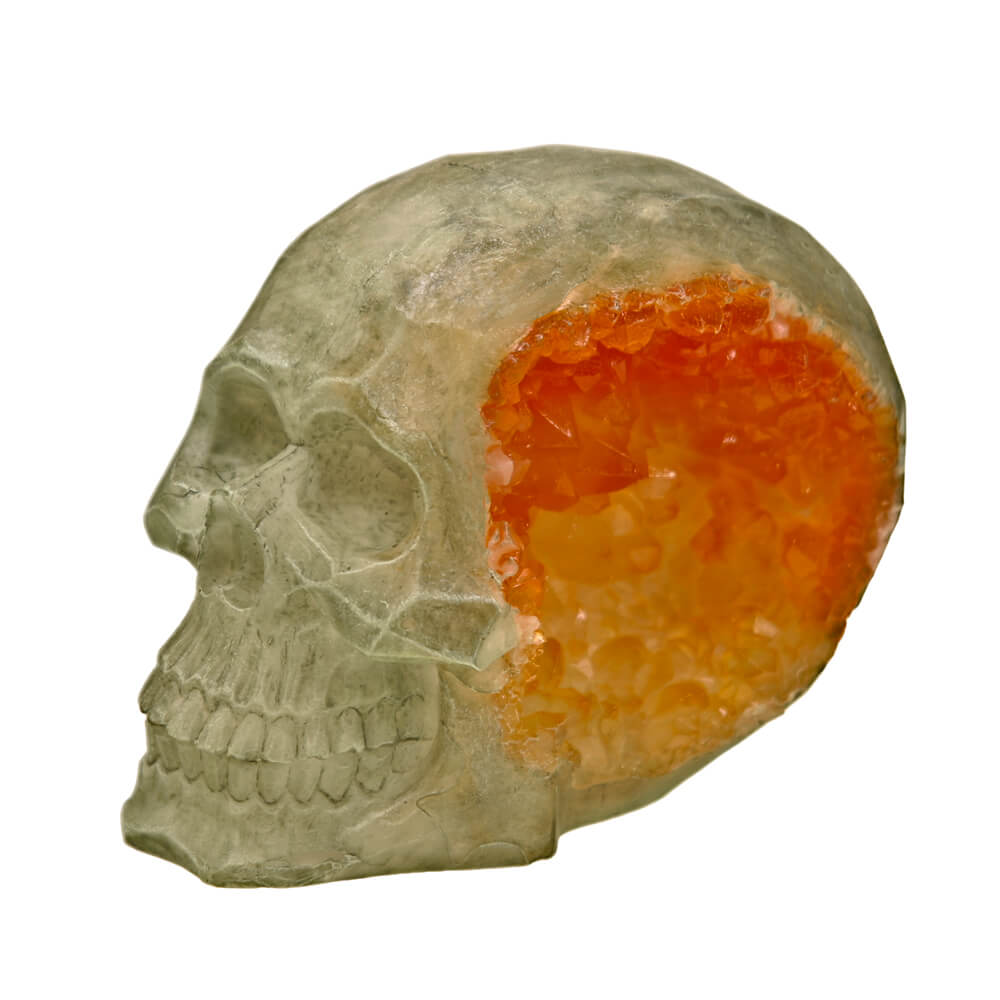 EE-1136 - Exotic Environments® Skull Geode Stone