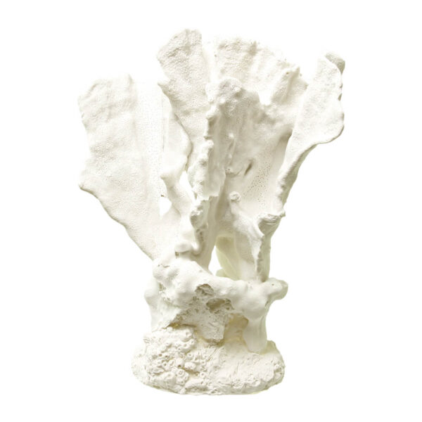 EE-1765 - Exotic Environments® Lettuce Coral White