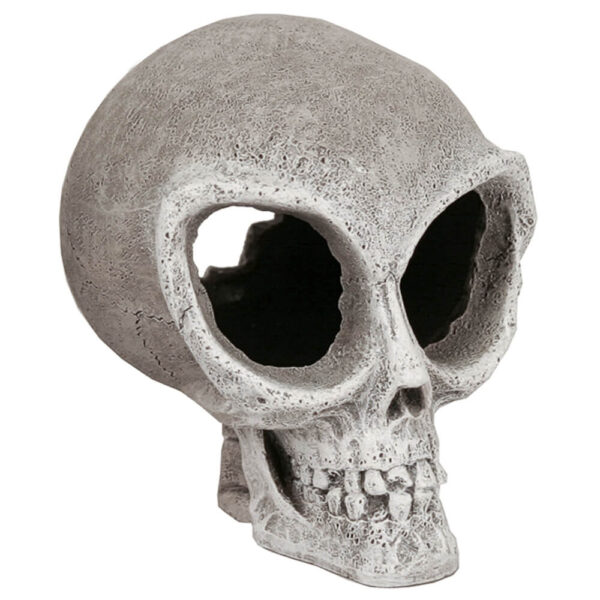 EE-348 - Exotic Environments® Alien Skull-Small
