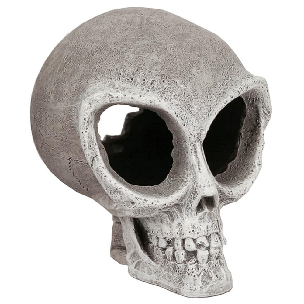 EE-348 - Exotic Environments® Alien Skull-Small