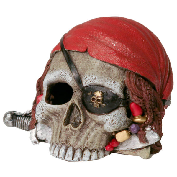 EE-734 - Exotic Environments® Small Wonders III - Pirate Skull