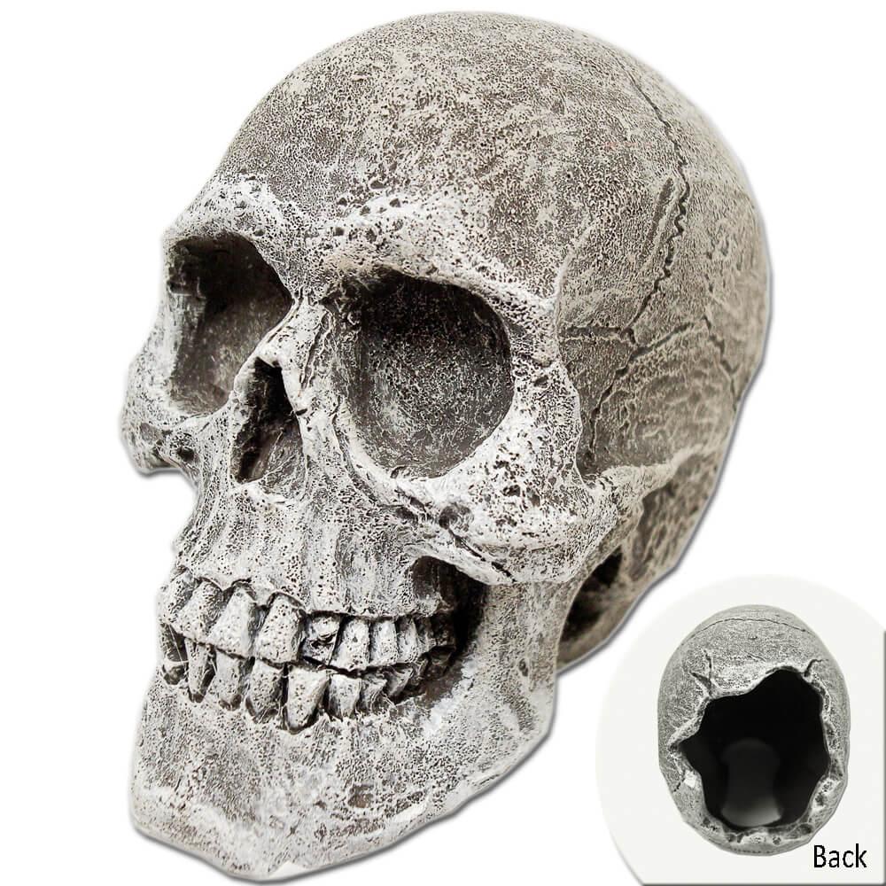 EE-818 - Exotic Environments® Human Skull Mini