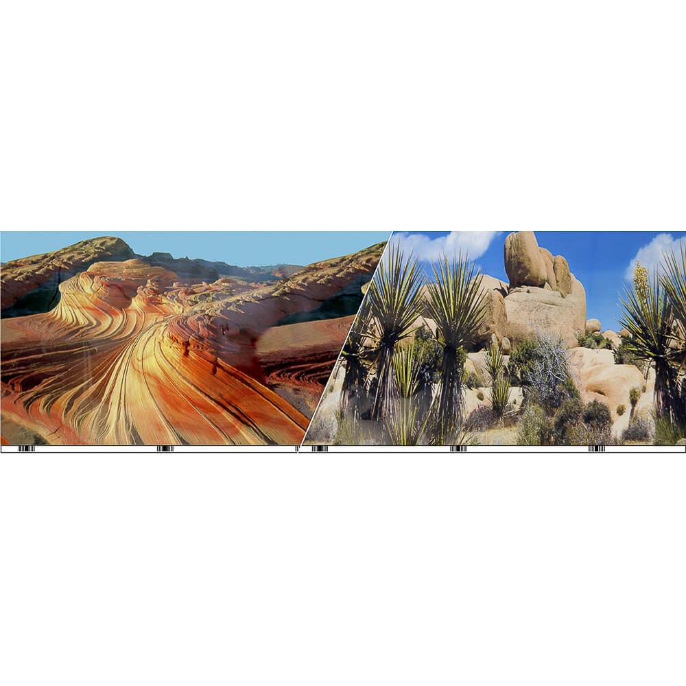 """VSB-14-12 - Vibran-Sea® Double Sided Background 12"""" - Cactus Desert/Desert Sand Stone"""